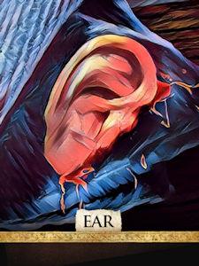 Ear Tokens x3